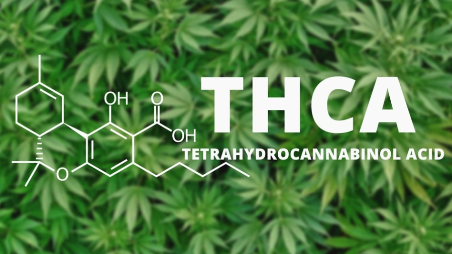 What is THCA