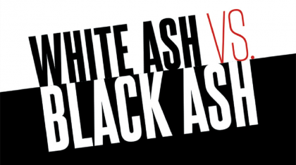 what color are ashes