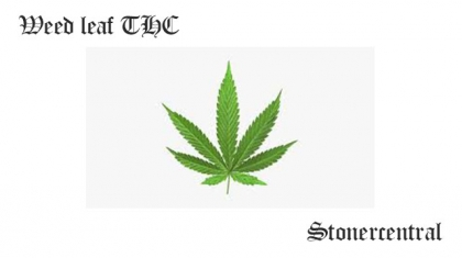 Weed leaf THC