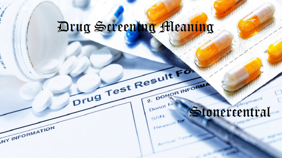 What-to-do-before-a-drug-screening-appointment.Featured