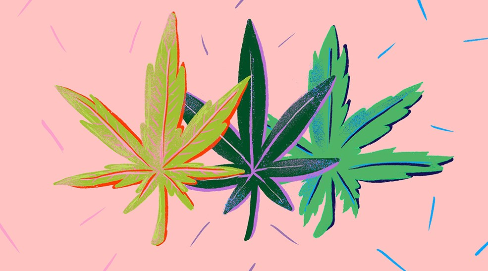 The most popular weed strains