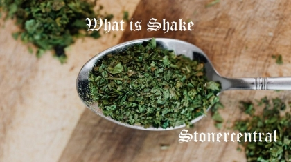 weed-on-a-budget-shake-feature-image-e1611932996498-1024x683