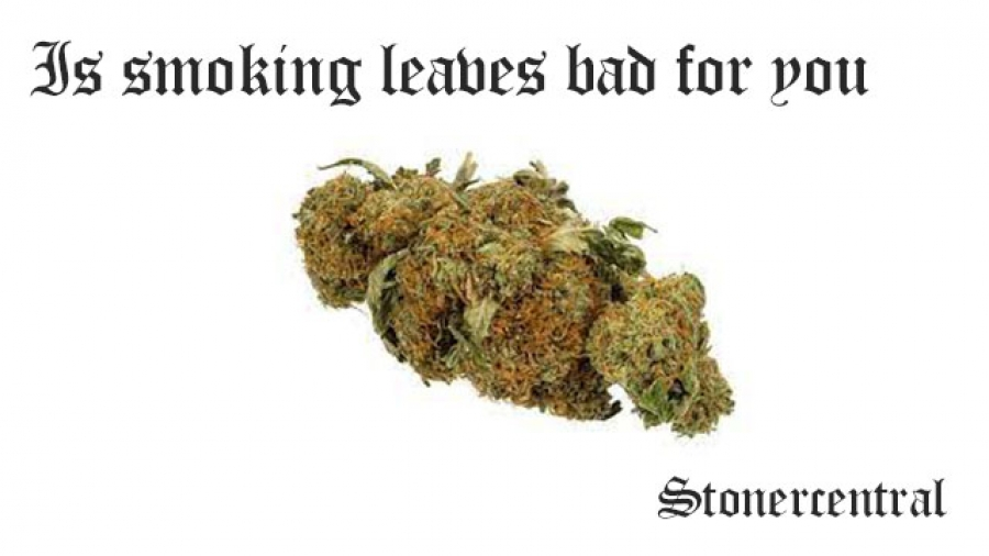 Is smoking leaves bad for you