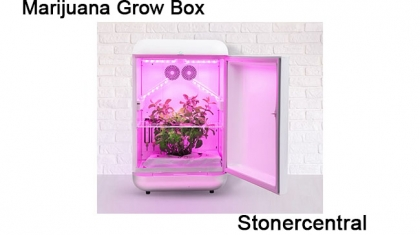 Marijuana-Grow-Box-03