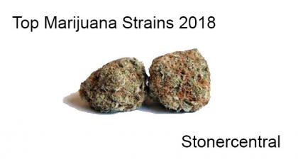 Top Marijuana Strains 2018