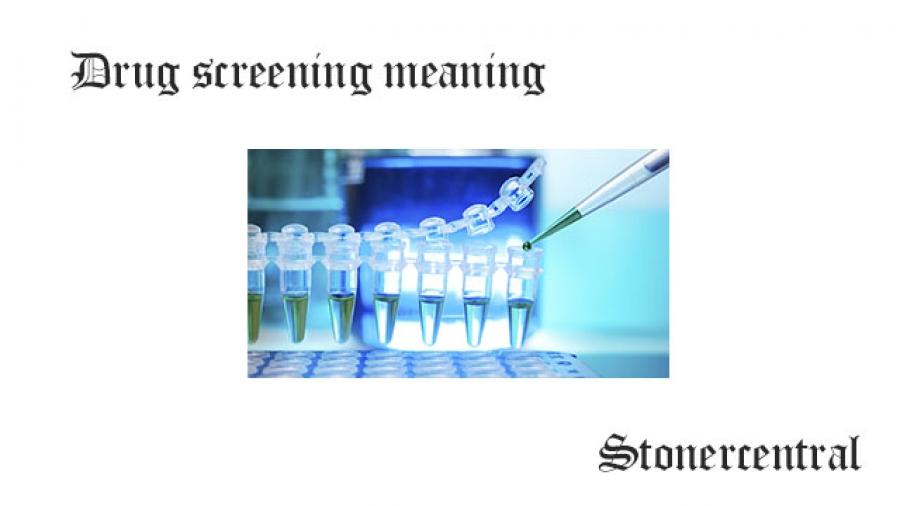 drug screening meaning