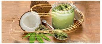 Cannabis-infused coconut oil: Benefits and recipe - Cannaconnection.com